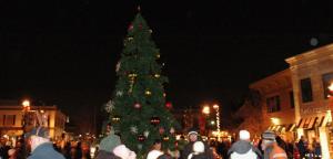 EGR Tree Lighting 2013